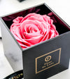 ACRYLIC BOX : Premium Single Rose Perfect Gift Red
