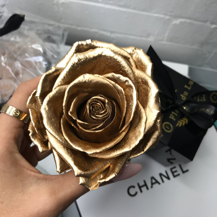 GOLD ROSES : Premium Rose in Acrylic Box