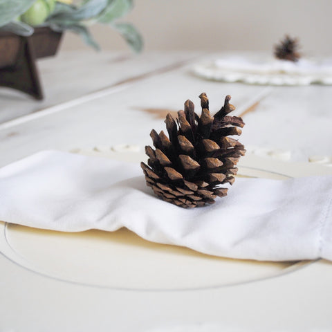 farmhouse, fixer upper, dining table, pine cone, setting, place, sugar and succulents