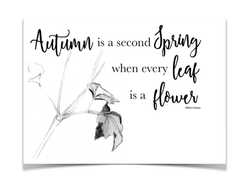 autumn, leaves, fall, printable, free,