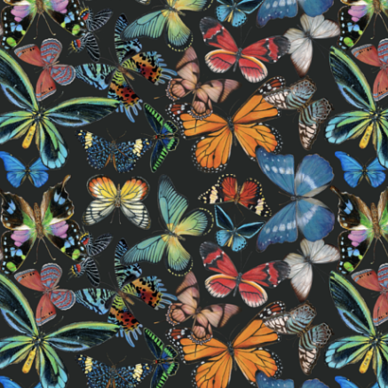 GiGY® Mini Pote Butterflies
