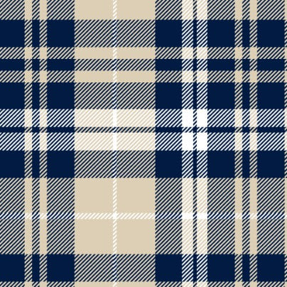 GiGY™ Mini Pote Navy Plaid