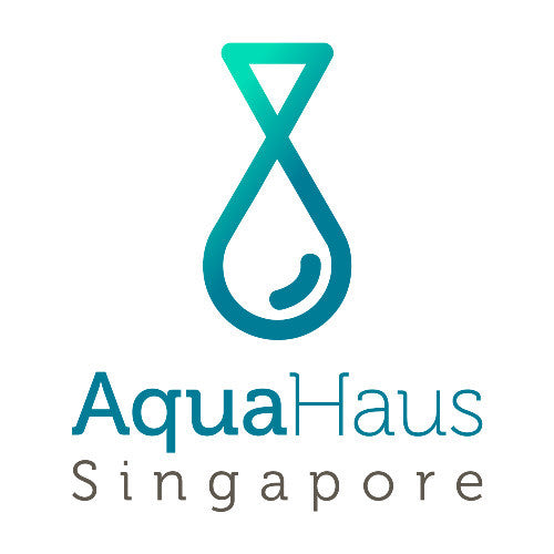 Welcome to Aqua Haus Singapore