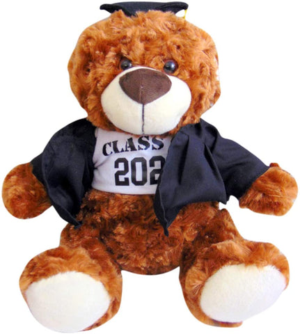 Class of 2020 Graduation Plush Teddy Bear Wearing Cap and Gown Grad Gift