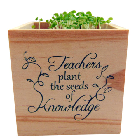 Teachers Plant the Seeds of Knowledge Wooden Planter Cube, 4 inch