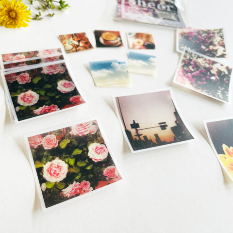 Mindwave Sheer Photo Sticker - Retro