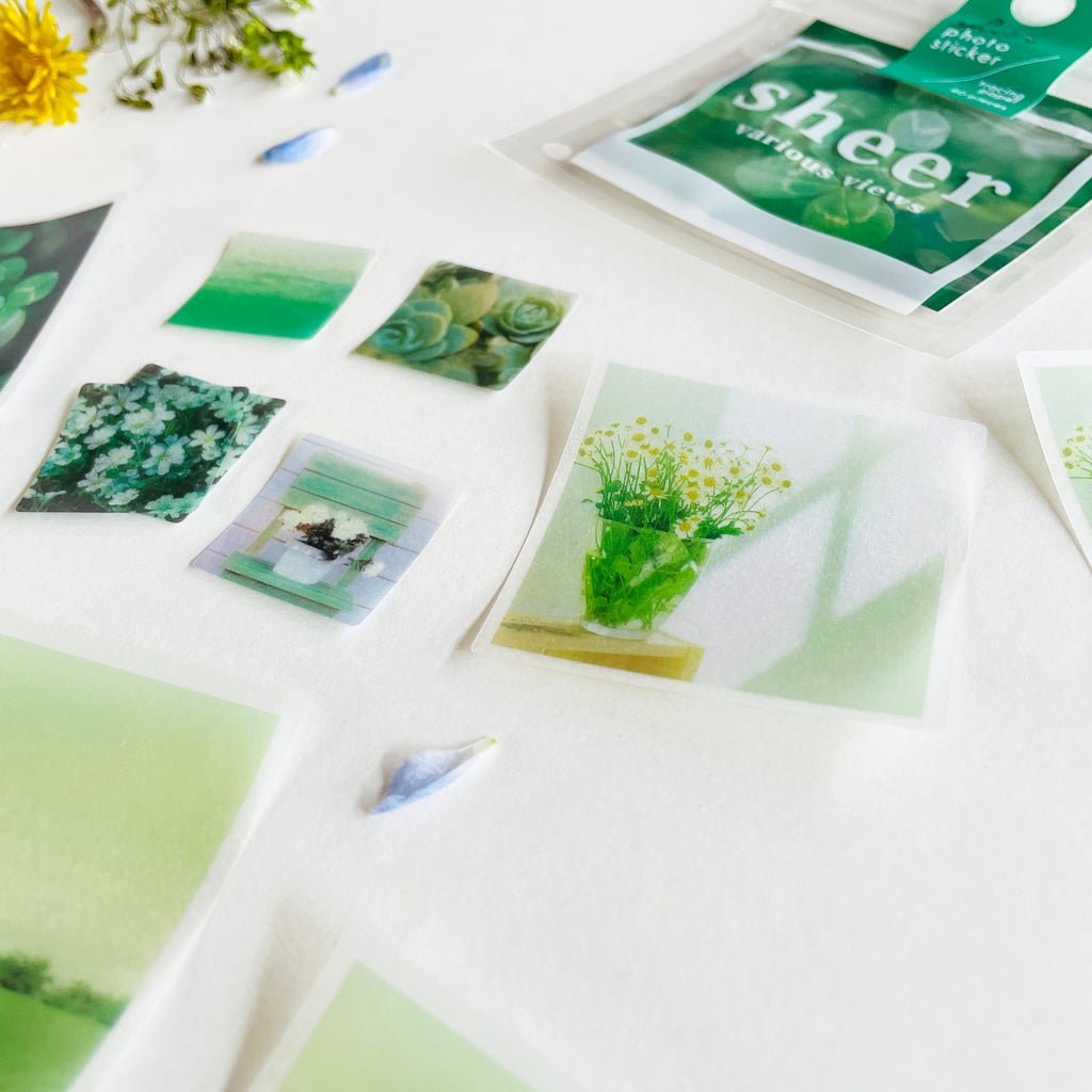 Mindwave Sheer Photo Sticker - Green