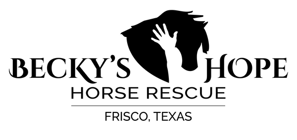 Support Becky's Hope Horse Rescue