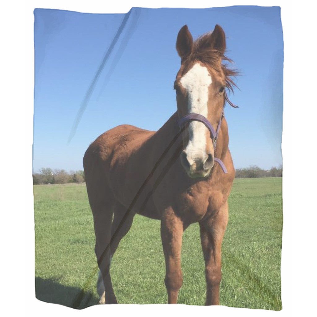 The BECKY from Becky's Hope Horse Rescue 50 x 60 Jersey Blanket Throw - Furbabies.love