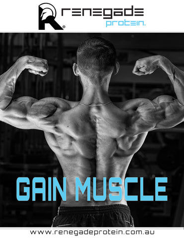 Gain Muscle for Men