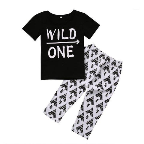 Wild One Arrow Set