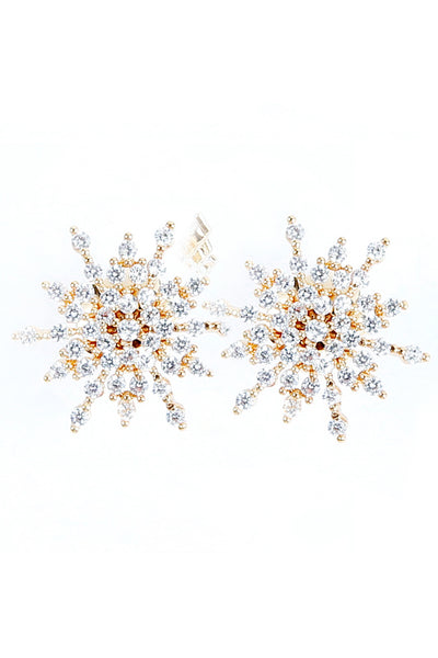 Frozen Big Earrings - Arium Collection