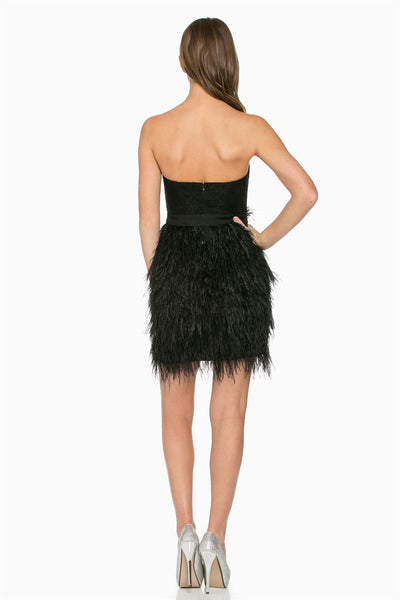 Black Feather Lace Tube Dress | Sadie Coleman