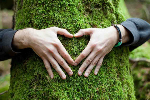 StyleAura - freepik.com - Hands in Shape of Heart on a Tree