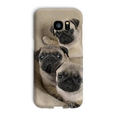 Cute Pugs Phone Case