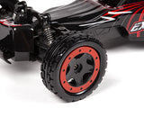 Extreme Speed Buggy 2.4GHz RTR Electric RC Buggy