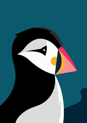 Puffin Illustration by Connor J Stephen
