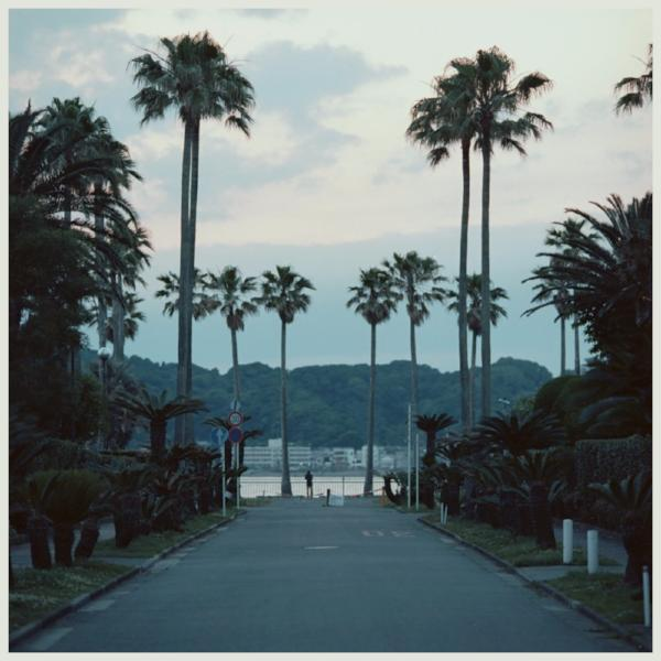 Submerse ‎– Are You Anywhere (Vinyl LP)