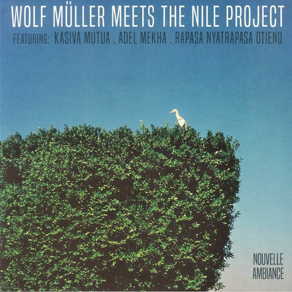 "Wolf Müller Meets The Nile Project - Wolf Müller Meets The Nile Project (Vinyl 12"")"