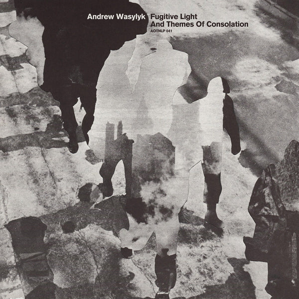 Andrew Wasylyk ‎– Fugitive Light And Themes Of Consolation (Vinyl LP)