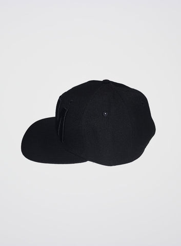 IEM Snapback Cap Black on Black