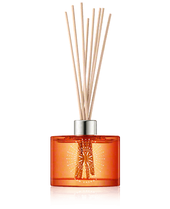 Artdeco New Energy Ginger  And  Goji Berry Home Fragrance with Sticks