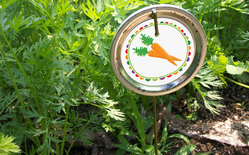 Free Printable Garden Markers Cute Diy Vegetable Row