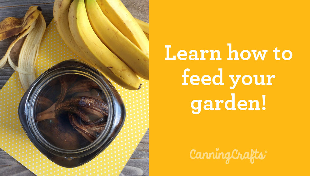 Banana Peel Fertilizers for the Garden