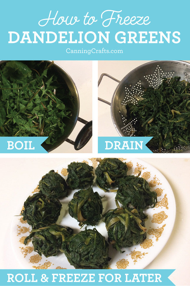 dandelion greens recipes | CanningCrafts.com