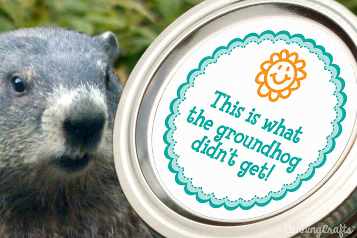 groundhog canning label