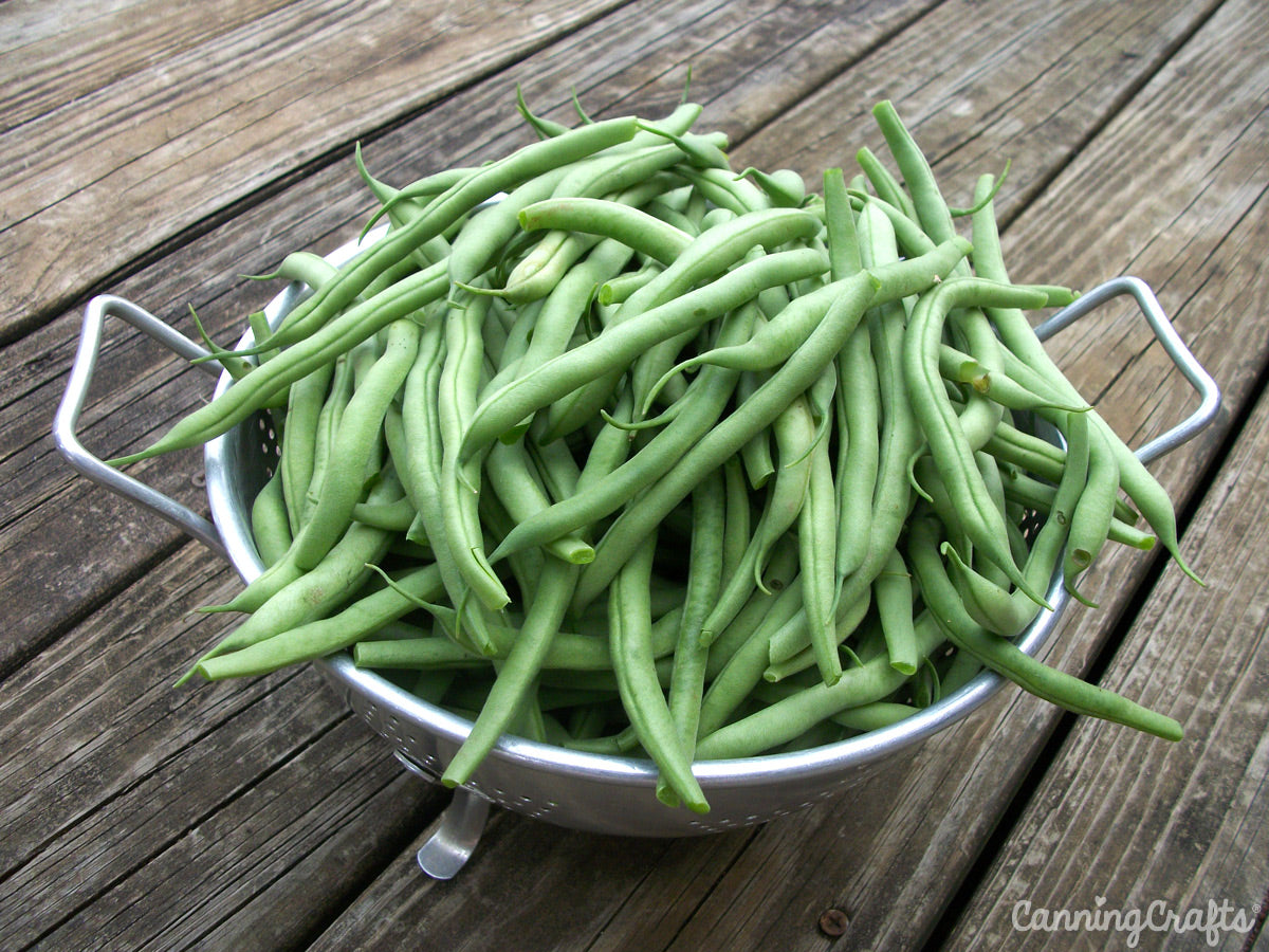 CanningCrafts green beans
