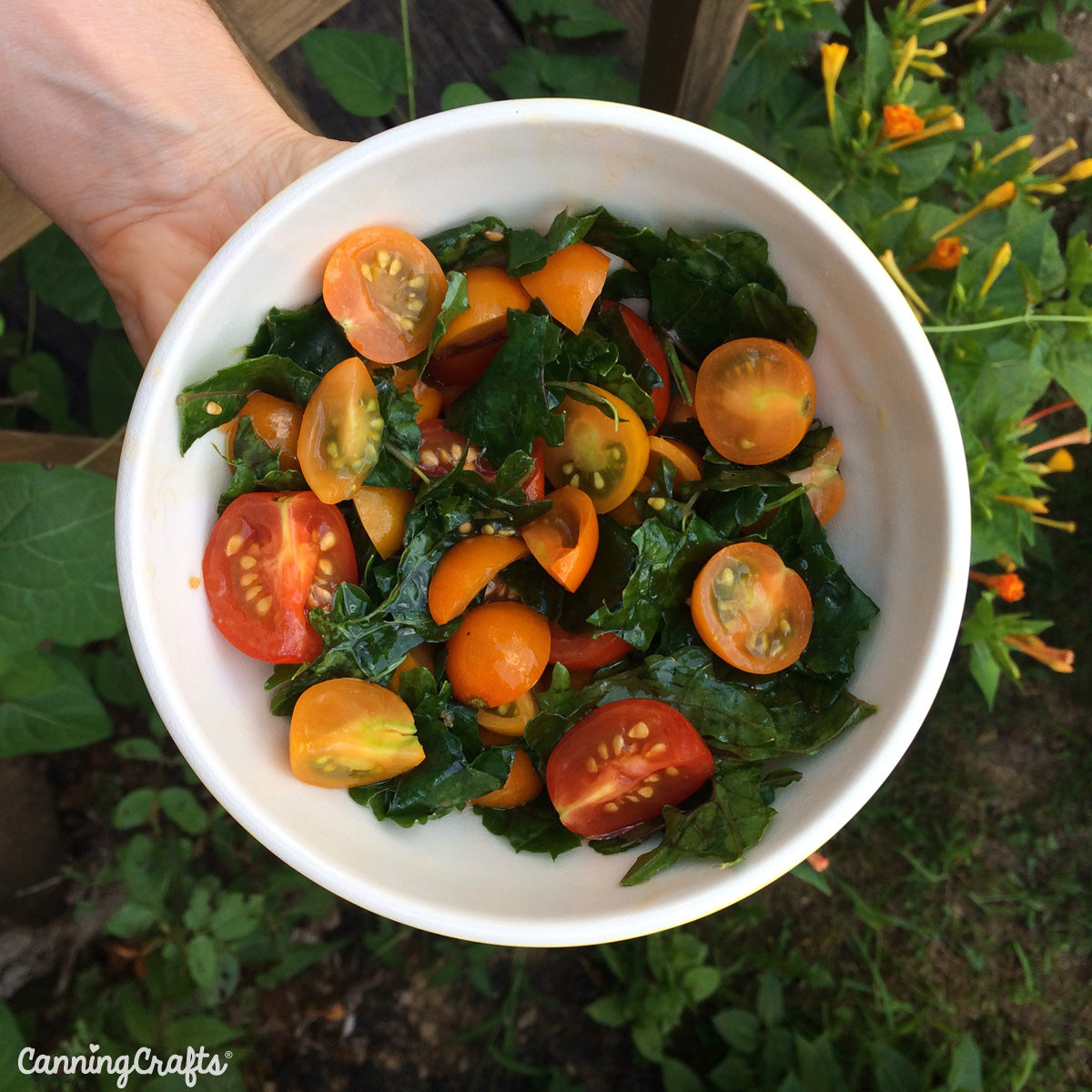 CanningCrafts.com Sungold Tomato & Kale Salad