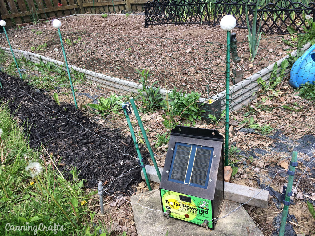 CanningCrafts 2018 Garden Electric Fence