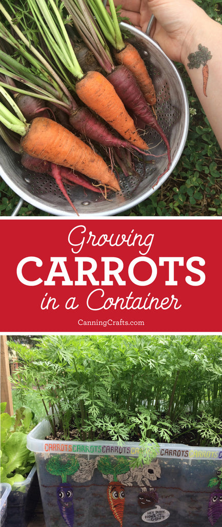 Garden 2018: Growing carrots in a container | CanningCrafts.com
