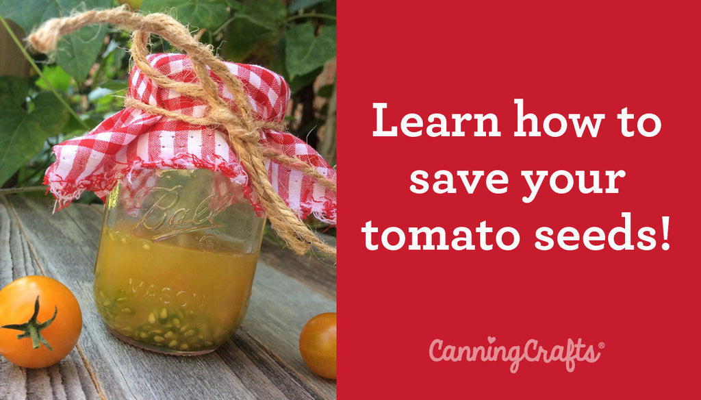 How to Save Tomato Seeds | CanningCrafts.com