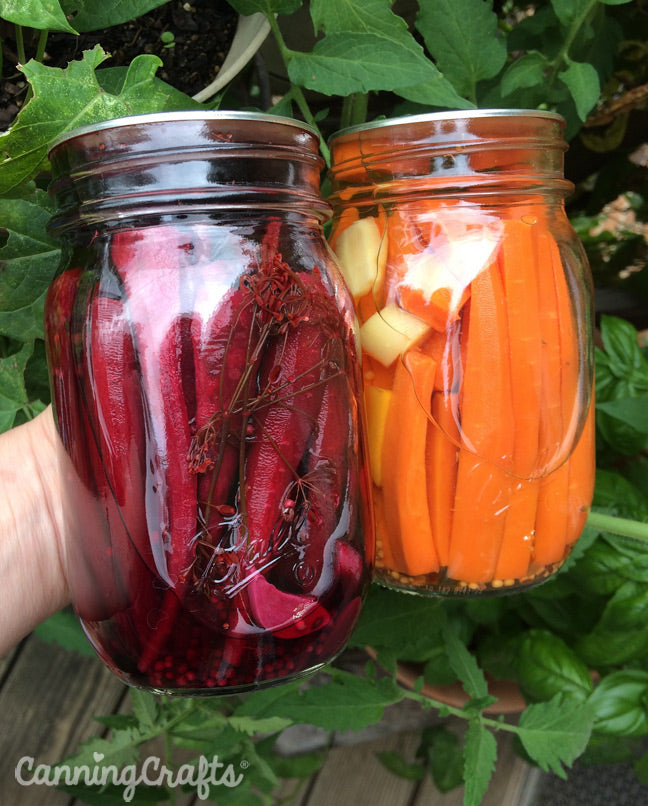 Canning Pickled Carrots