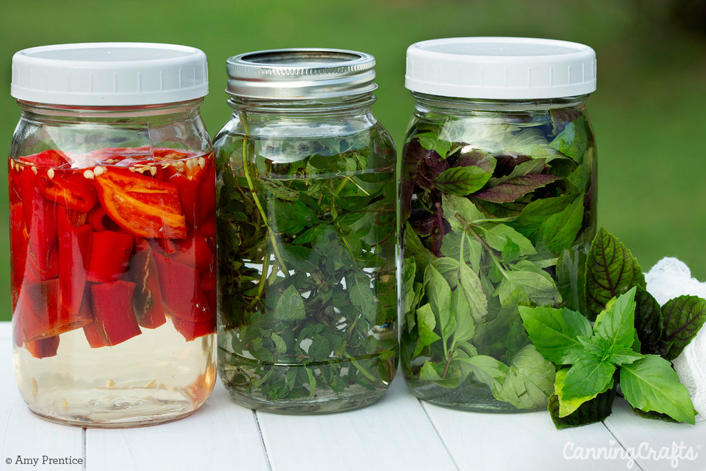 Pepper & Herb Flavor Infused Vinegar in Mason Jars | CanningCrafts.com
