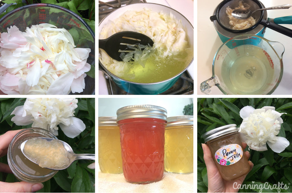 Garden 2019: Making Peony Jelly | CanningCrafts.com