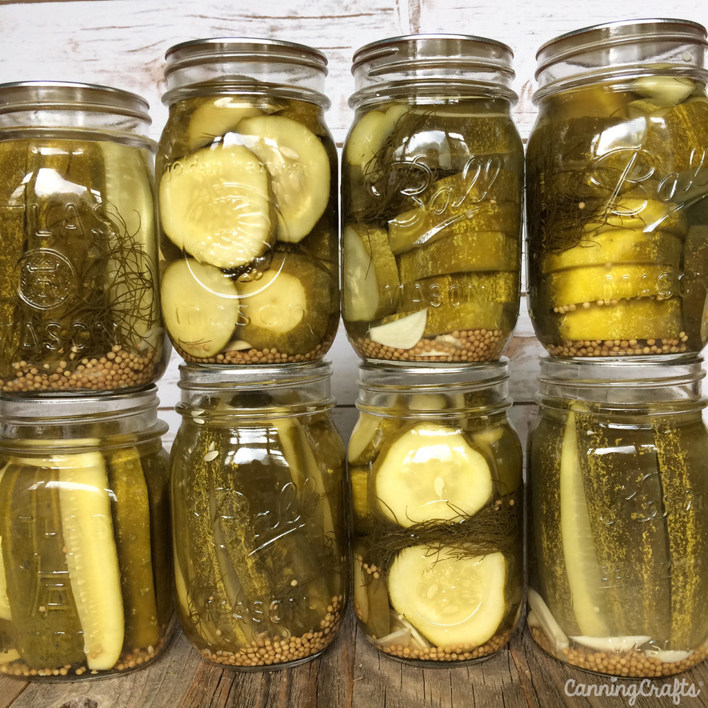 Garden 2019: Canning Pickles | CanningCrafts.com