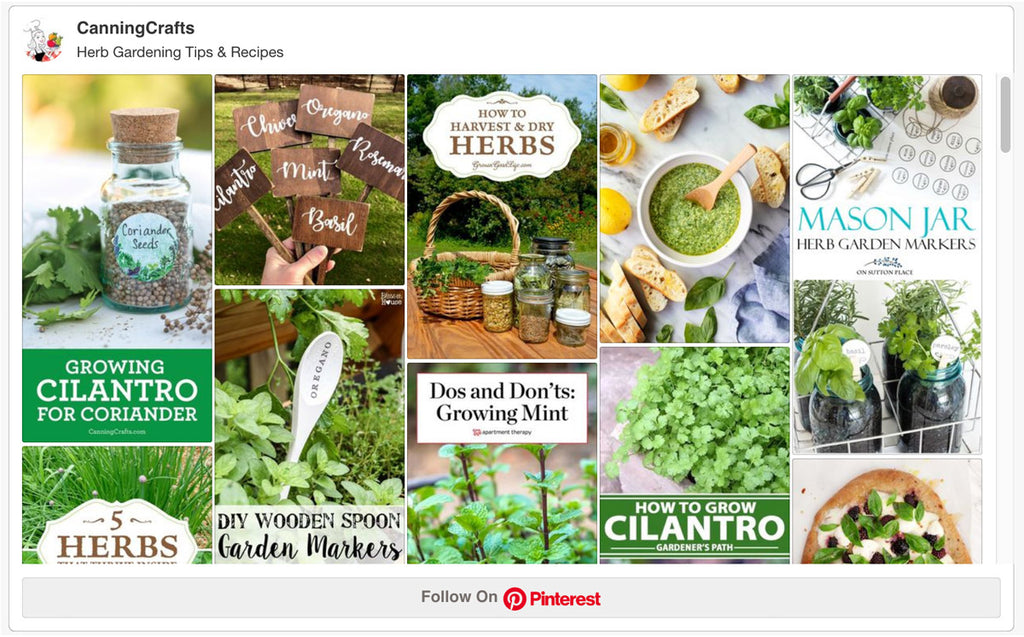 Herb Gardening Tips & Recipes Pinterest Board | CanningCrafts.com