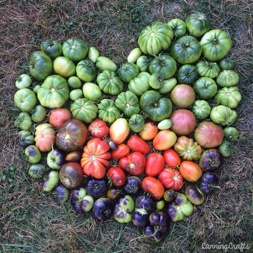 Heirloom Tomatoes in Heart | CanningCrafts.com