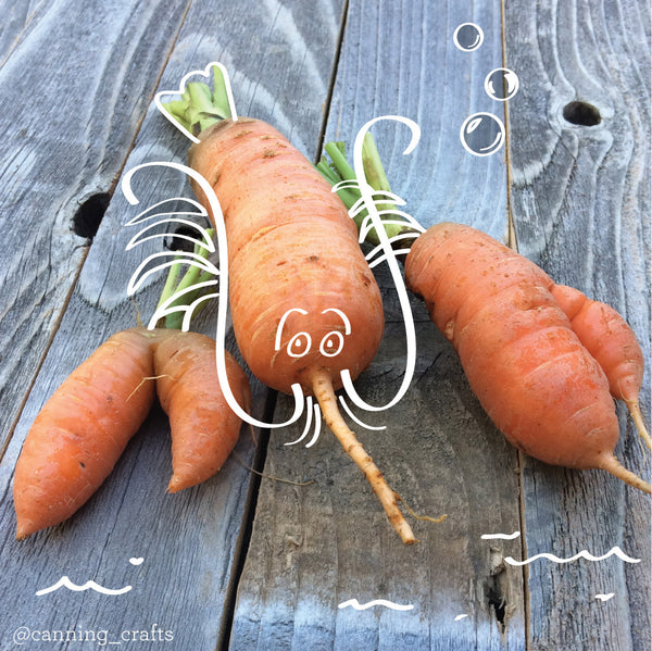 Twisted Carrot Theater | CanningCrafts.com