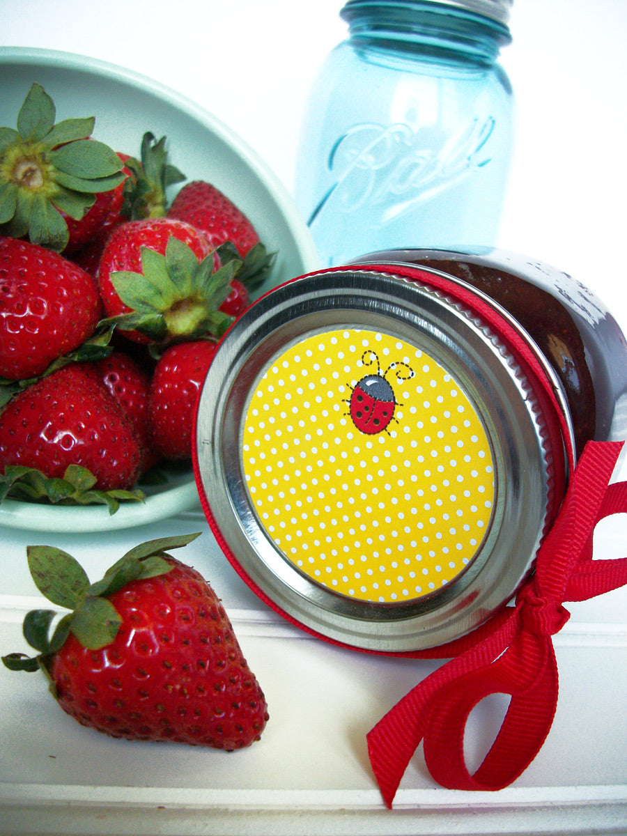 cute ladybug canning jar labels | CanningCrafts.com