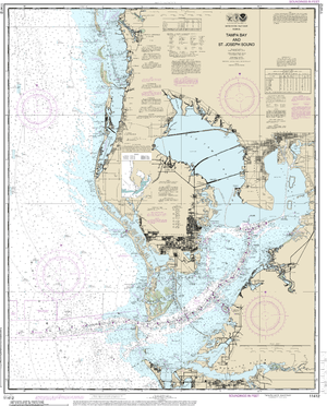 NOAA Nautical Chart 11412: Tampa Bay and St. Joseph Sound