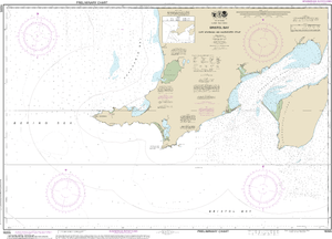 NOAA Nautical Chart 16305: Bristol Bay-Cape Newenham and Hagemeister Strait