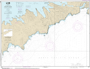 NOAA Nautical Chart 16514: Kulikak Bay and Surveyor Bay