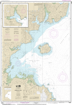 NOAA Nautical Chart 16648: Kamishak Bay;lliamna Bay