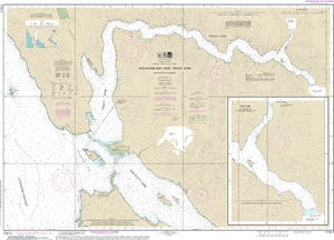 NOAA Nautical Chart 17311: Holkham Bay And Tracy Arm - Stephens Passage