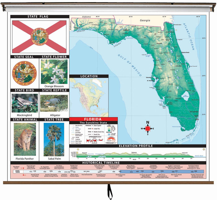 Florida State Primary Thematic Classroom Wall Map