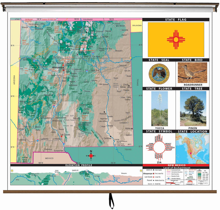 New Mexico State Primary Thematic Classroom Wall Map